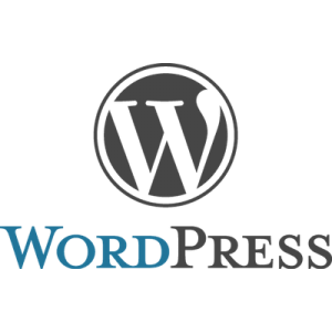 wordpress and website health